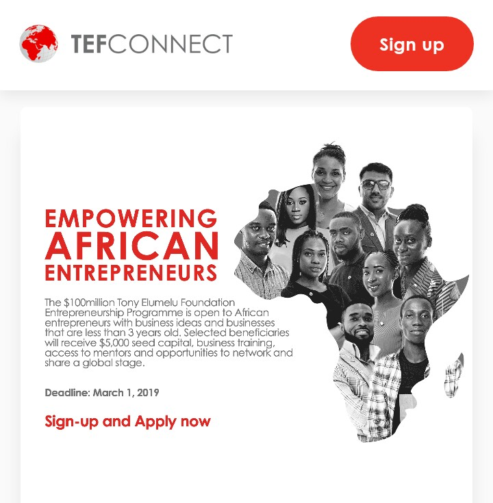 TONY ELUMELU FOUNDATION PROGRAMME 2019